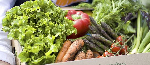 How to…Reduce Food Waste at Home
