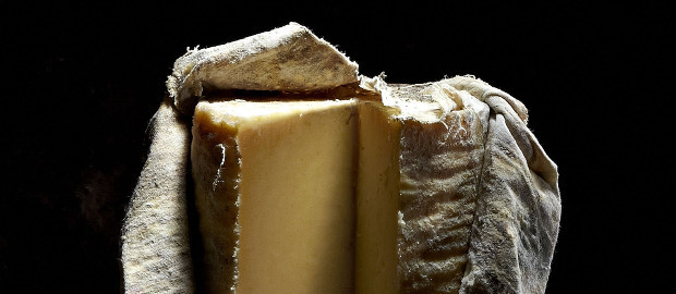 Wookey Hole Aged Cheddar Wins Best English Cheese