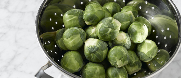 From Field to Plate: Sprouts