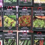 WIN a Selection Pack of Vegetable Seeds (Closed)