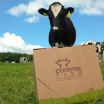 Organic farming at Coombe Farm