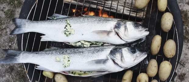 Tide to Table: A Summer of Sea Bass