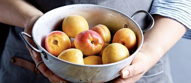 Apricots FTP