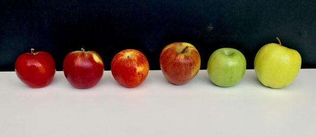 The Glorious Apple Glut