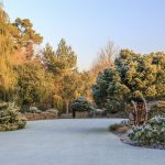 Great inspiration even in winter at RHS Garden Rosemoor