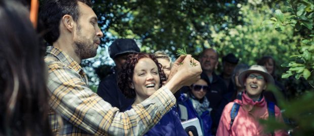 Organic foraging workshops at The Community Farm