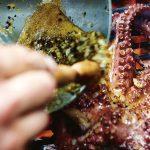 Beach Bar Grilled Octopus