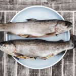 Mastering Seafoodwith Nick Evans